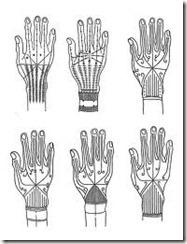 motifs tatouage mentawai