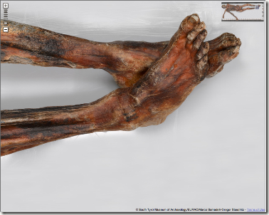 Ötzi lumiere infrarouge gizmoddo.fr.jpg 2