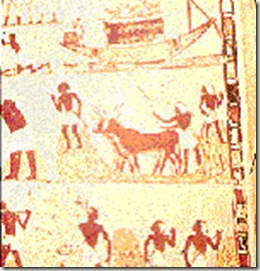bout de la fresque moisson égyptienne-tombe de menna-augustin lesage