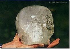 crâne de cristal Max