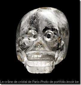 le crâne de cristal de Paris