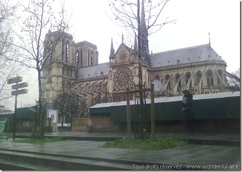 notre dame de paris - www.wonderful-art.fr