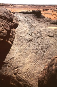 Photo: http://africanrockart.org