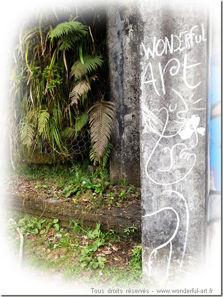 street-art-craie-wonderful-art-ile-de-la-reunion-takamaka1