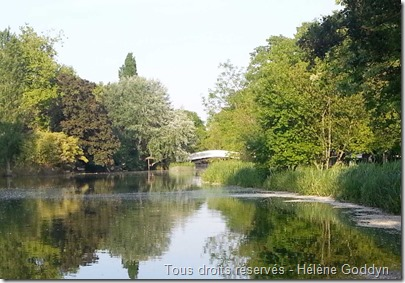 lac des ibis_le vésinet_Paris