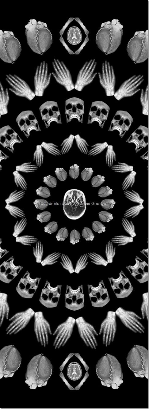 Mandala_mandala humain_radio_radiographie_art et médecine_méditation_hélène goddyn_wonderful art_art contemporain_Céleste