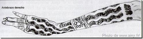 bras tatou ® dame de cao