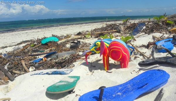 http://www.wonderful-art.fr/wp-content/uploads/2014/09/OCEAN_SOLE_ELEPHANTS_blog.kezu_com.jpg