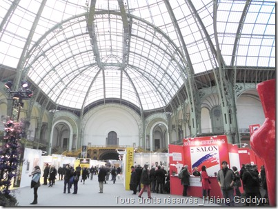 salon des artistes francais_art-en-capital_grand-palais_france_champs-elysées_helene-goddyn_wonderful-art_entrée-salon-2014