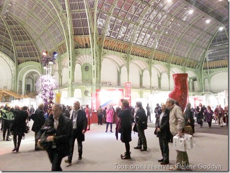 art-en-capital_grand-palais_france_champs-elysées_helene-goddyn_wonderful-art_vernissage