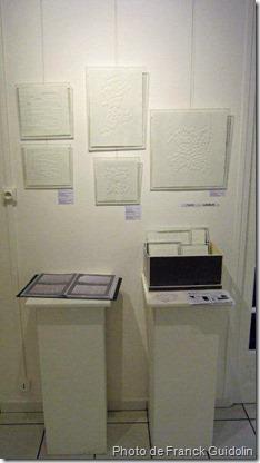 Espace Christiane Peugeot_Exposition d'art_l'Oeil Neuf_franck guidolin