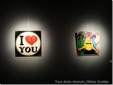 Galerie-Arielles-d'hauterives_découvertes-hivernales_2015_helene-goddyn_art-et-mémoire-collective_art-numérique_faux-cul_les-3-garces