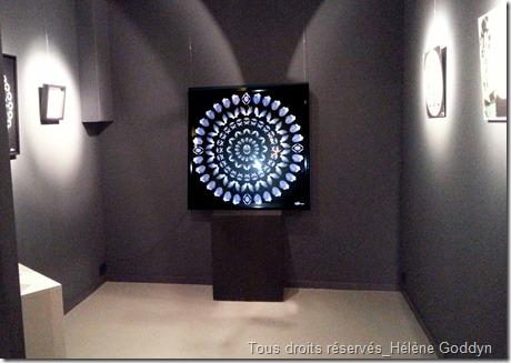 Galerie-Arielles-d'hauterives_découvertes-hivernales_2015_helene-goddyn_mandala-humain_art_médecine_light-box