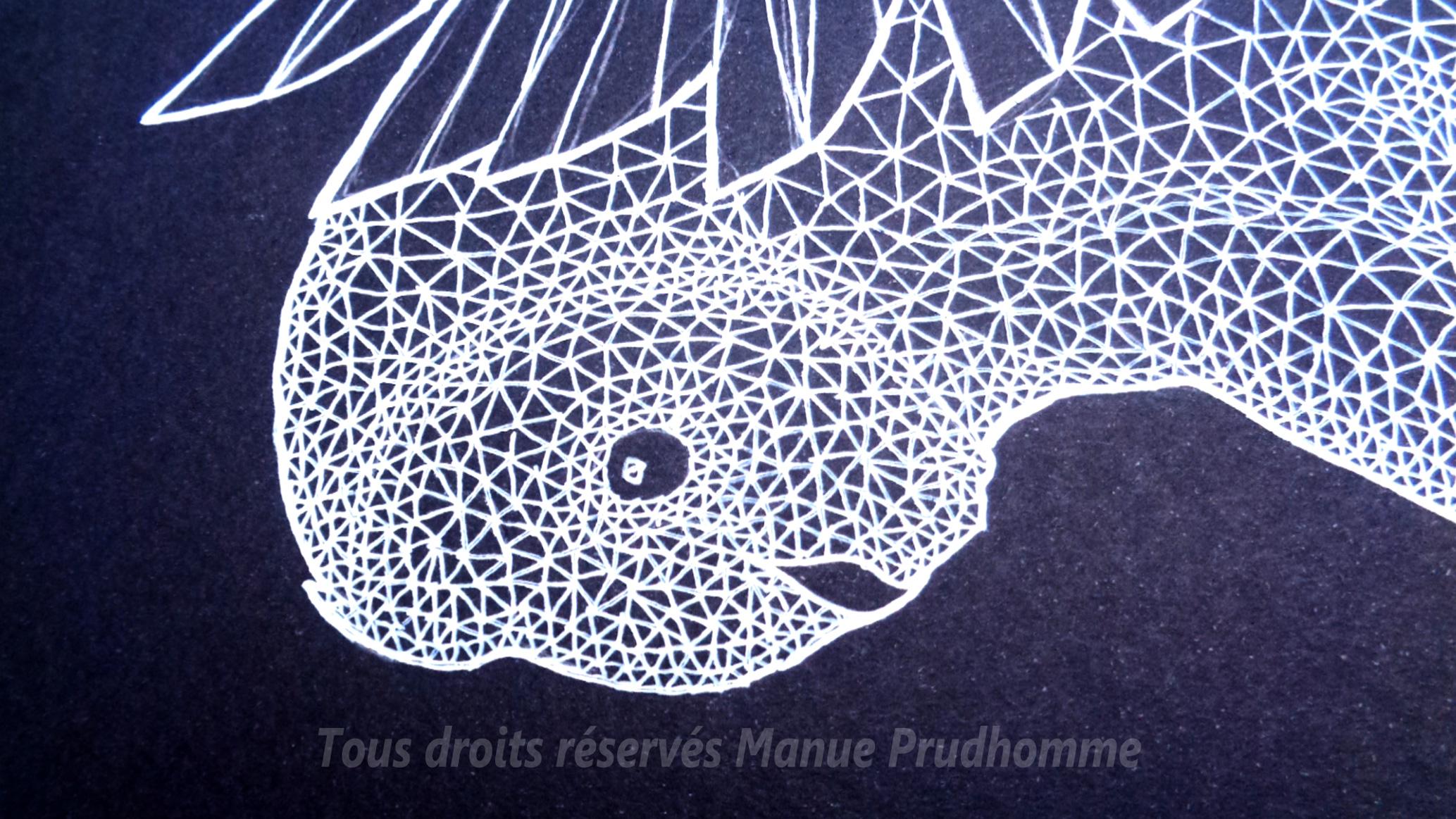 """""""Chouette II"""" par Manue Prudhomme, A3, feutre sur papier noir, 2017"""